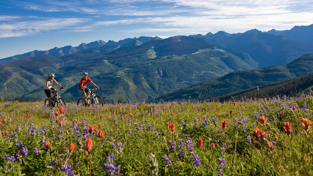 VLMD_Hero__Biking_Flowers