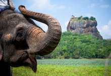 Journey to ravana bhoomi - srilanka