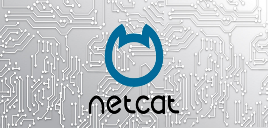 How to Simulate a TCP/UDP Client Using Netcat