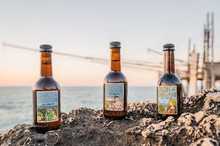 Modello di business di Birra del Gargano
