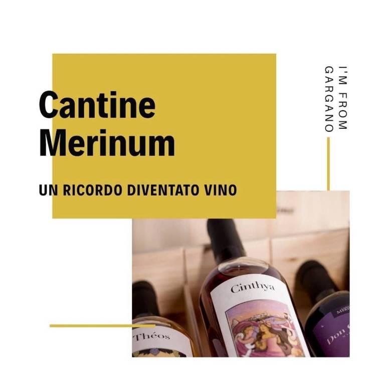 Cantine Merinum