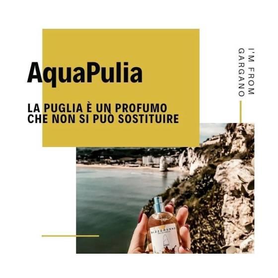 AquaPulia