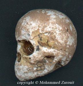 Le datage du carbone est souvent utilisé pour déterminer l'âge d'un fossile. par exemple un crâne Humanoïde rencontres Djibouti