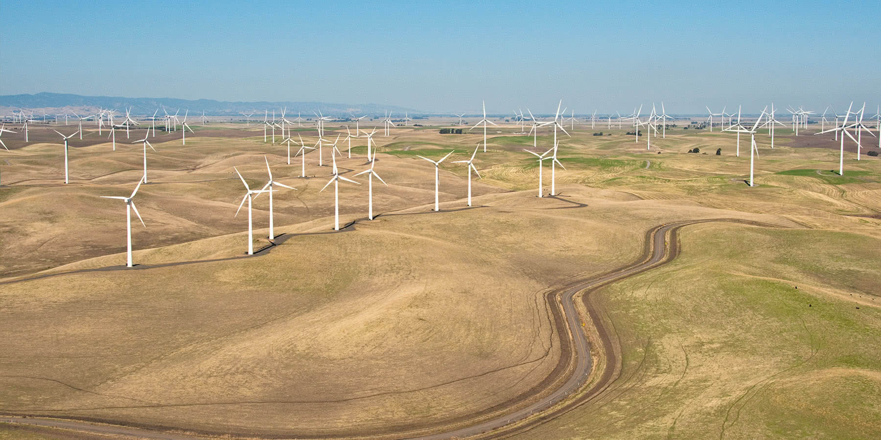 Wind turbines in Altamont Pass, California