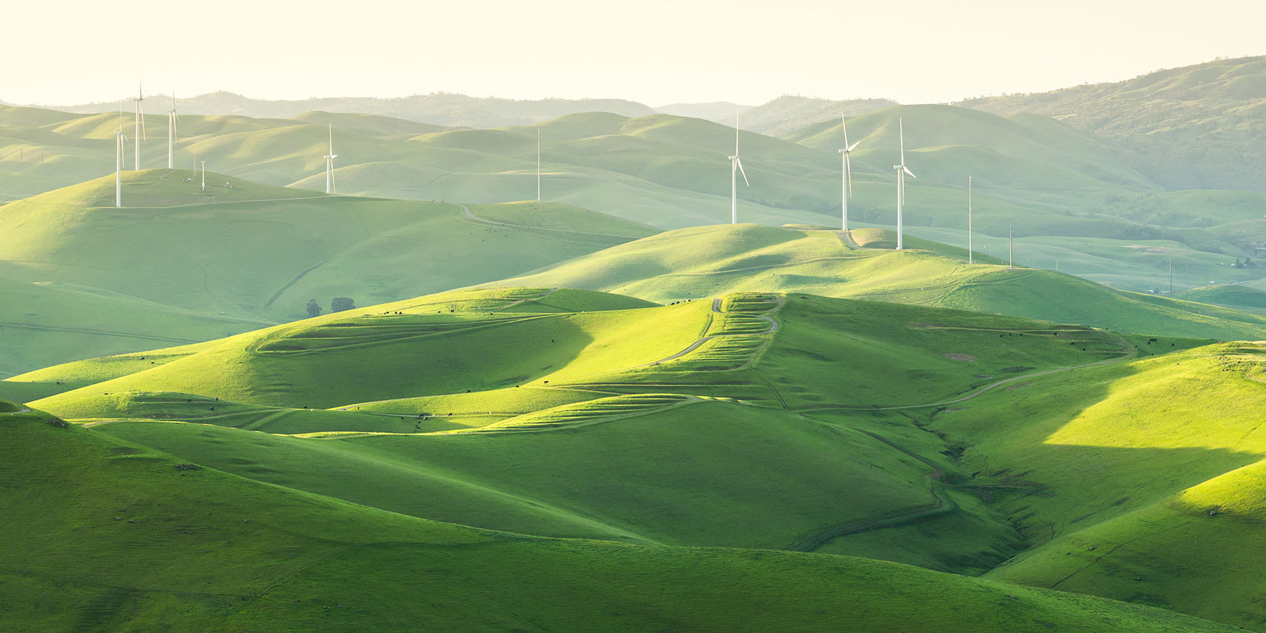 Wind turbines in green fields at Altamont Pass, California