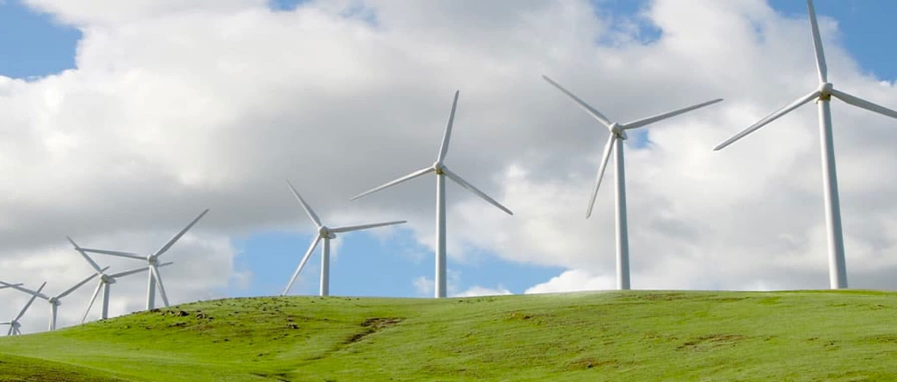 Wind Turbines spinning over a green field and a blue sky, generating power for the east bay.