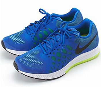 Nike Zoom Pegasus 31 for Men