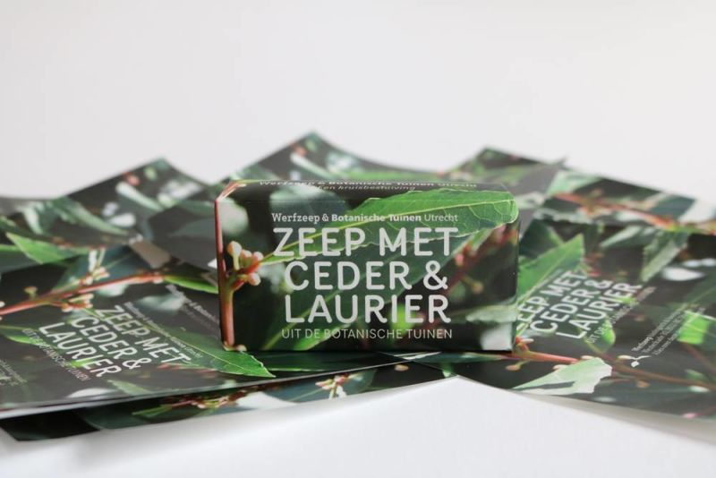 werfzeep - botanische-tuinenzeep-iii---ceder-laurier
