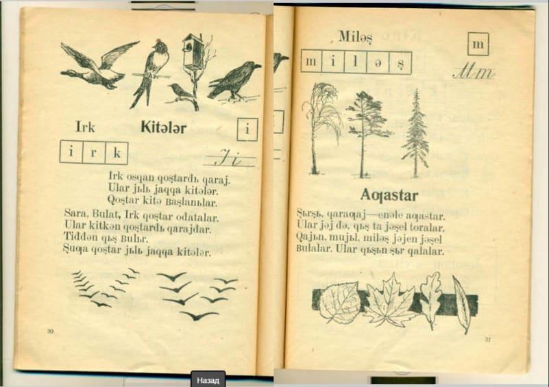 деревья Башкортостана