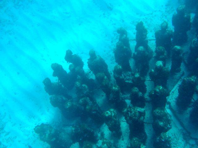 Isla Mujeres2