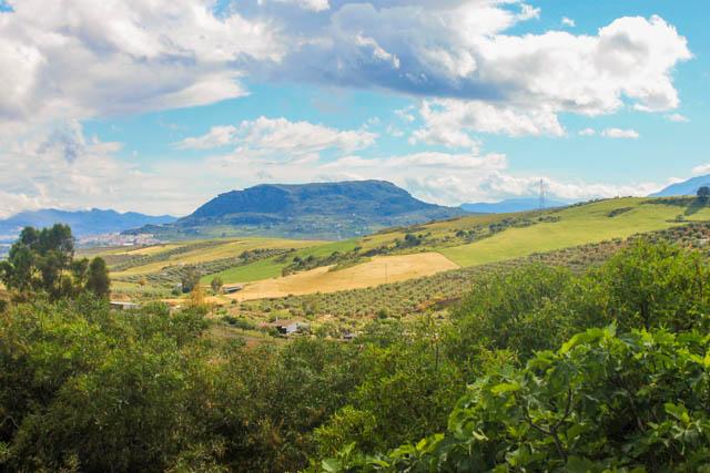 Andalucia countryside near Alora