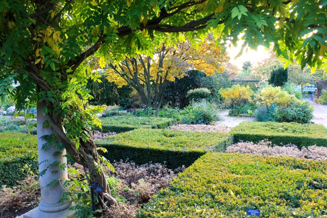 Chicago Botanic02
