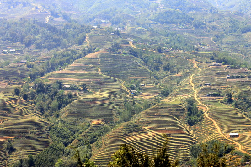 Sapa, Vietnam's beautiful hills and rice paddies