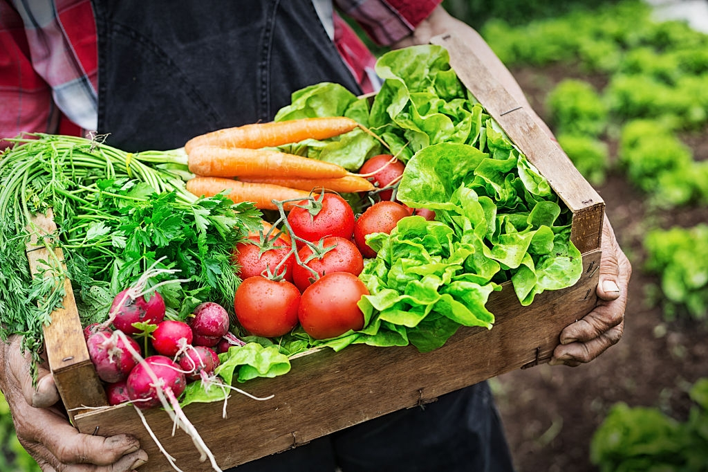 Top 5 Vegetables That Are Nutritious When Eaten Raw