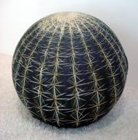 Tatino Cactus by Baleri Italia