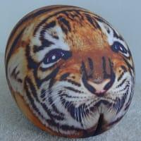 Tato Tattoo Tiger Club by Baleri Italia