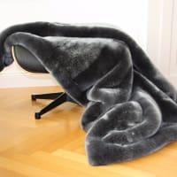 Seehund grau von carma