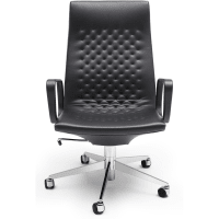 DS-1051 (Exec Chair) par de sede