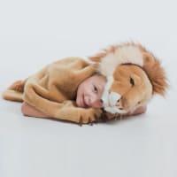 Lion par Wild & Soft