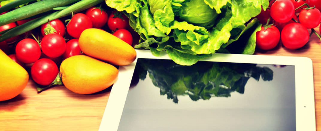 Online Diet Health Program