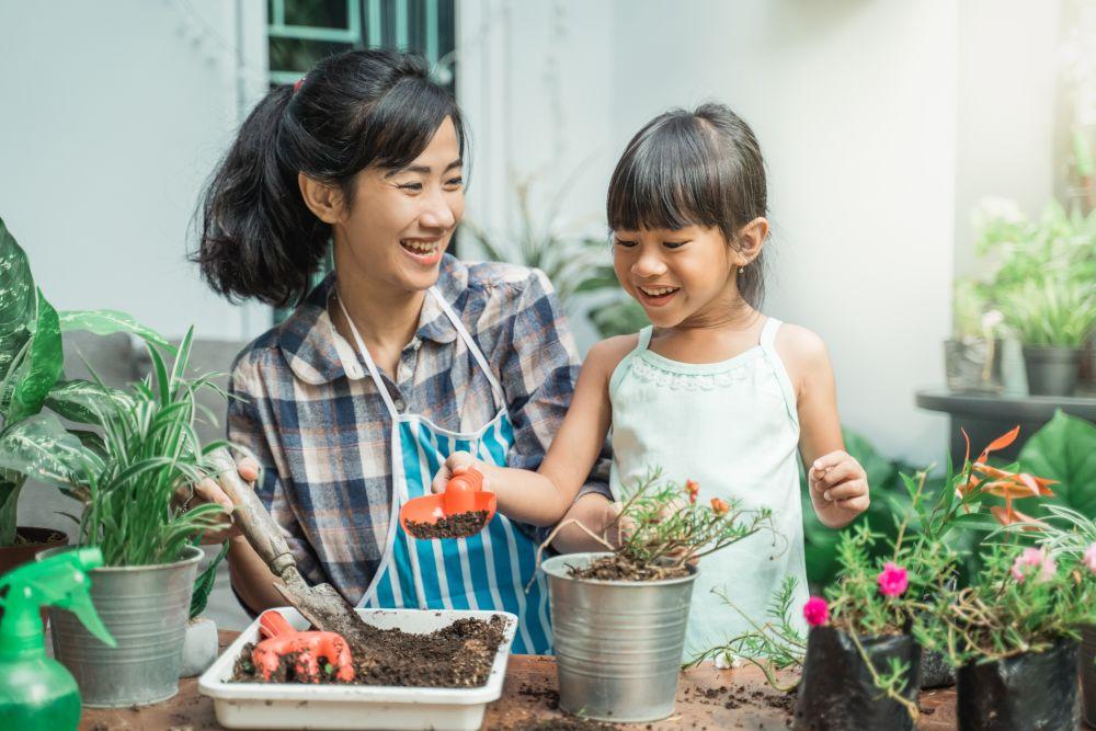Family Vegetable Potting
