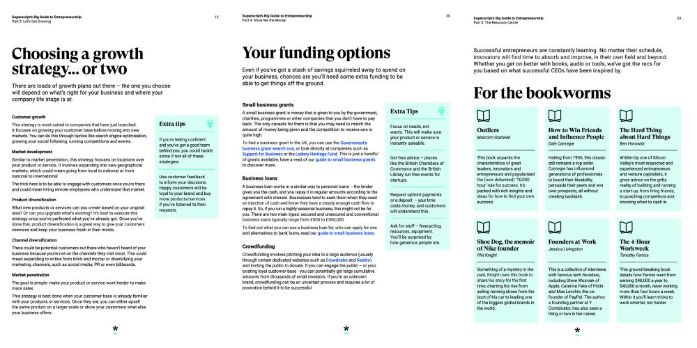 snapshot of guide to entrepreneurship