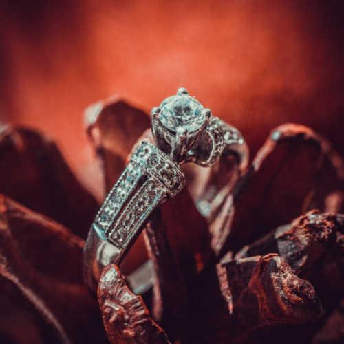 Weddings Wedding Photography in Toronto | Photo #13