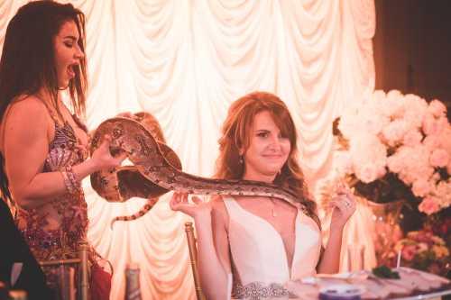 Igor & Anastasia Wedding Photography in Toronto   Photo #55