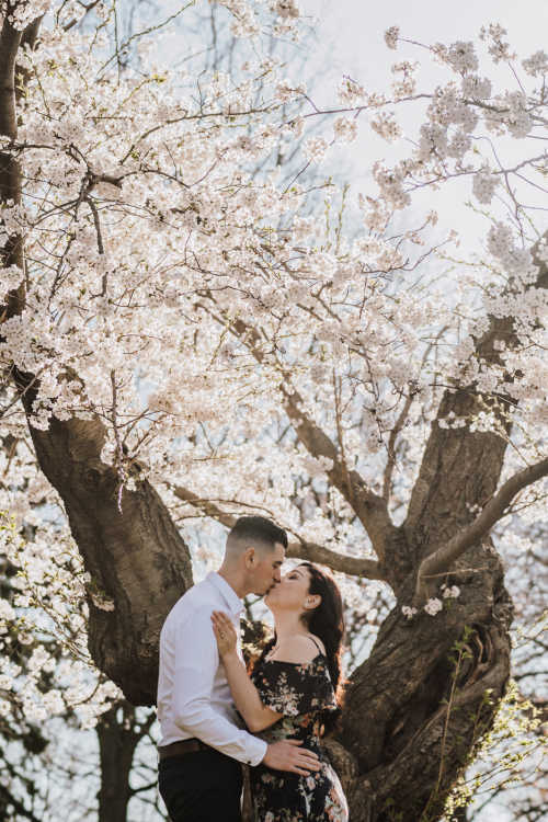 Engagements Wedding Photography in Toronto | Photo #1