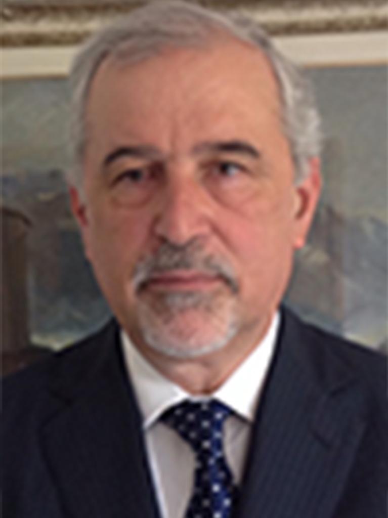 السيد/ جيوفاني بيرغاميني