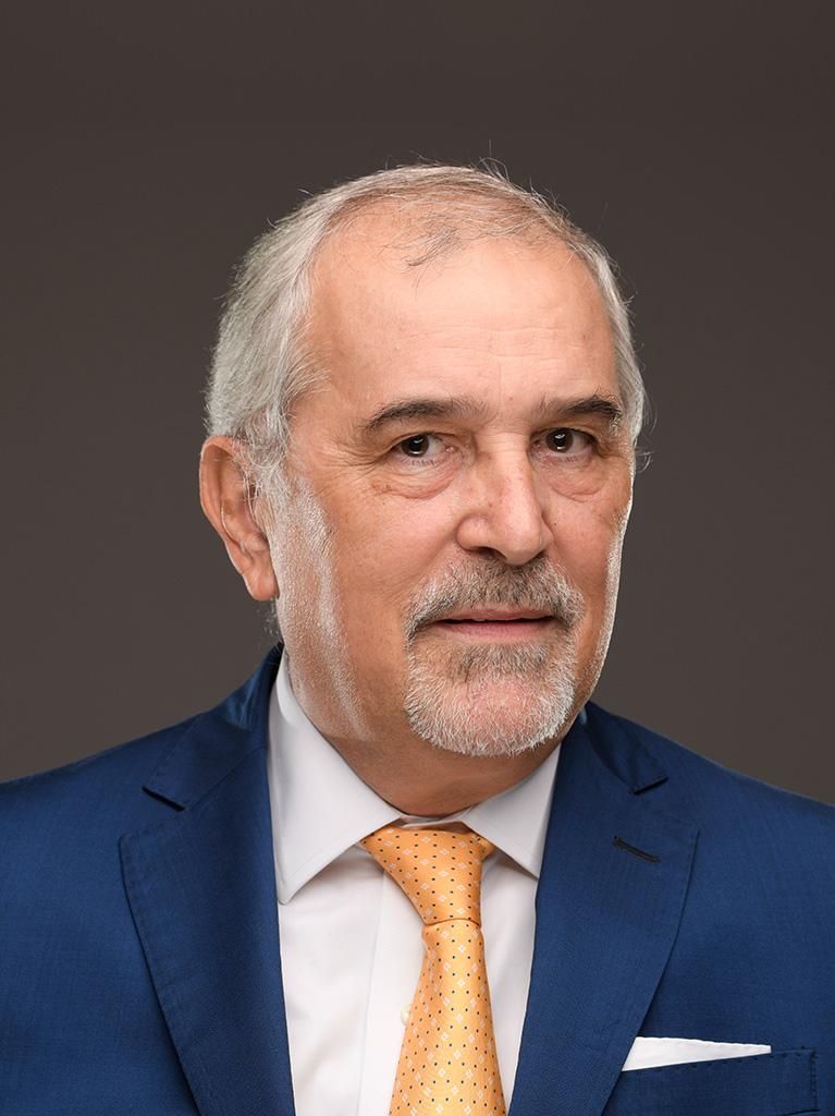 Mr. Giovanni Bergamini