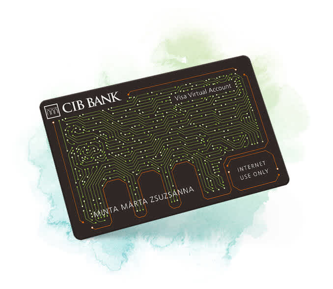 Visa InternetCard