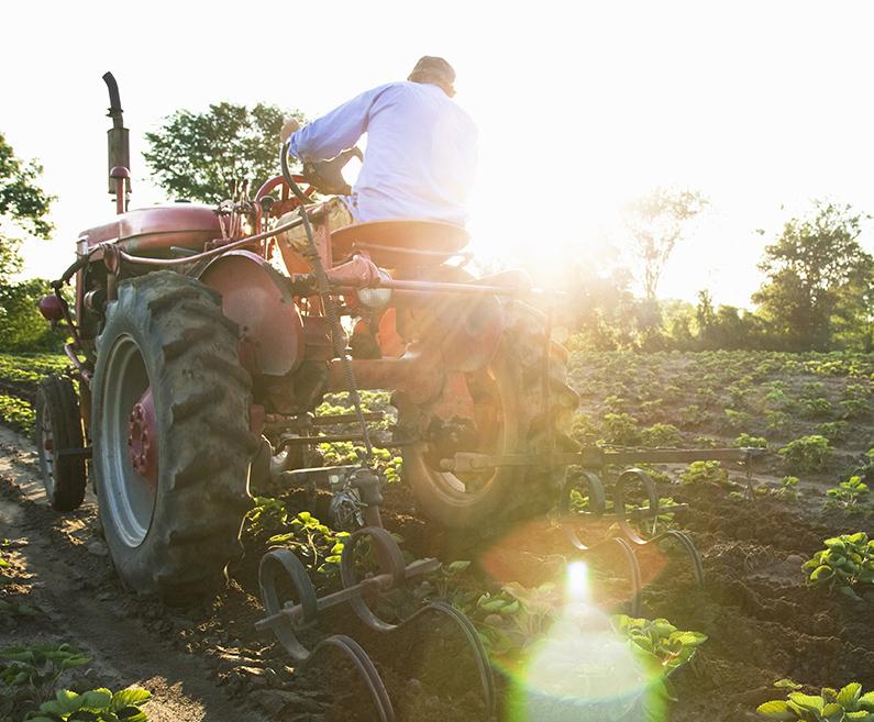 Agro - Kapital Qarkullues