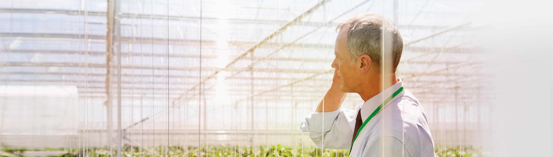 Poslovnež v svojem rastlinjaku koordinira naloge