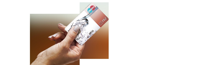 Maestro Chip card