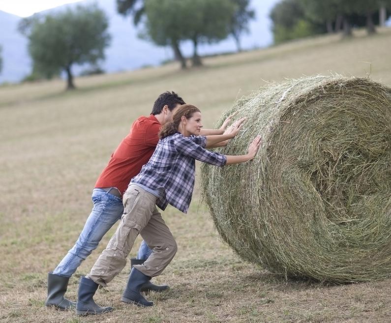 banca intesa kreditni okvir za kupovinu poljoprivrednog zemljista