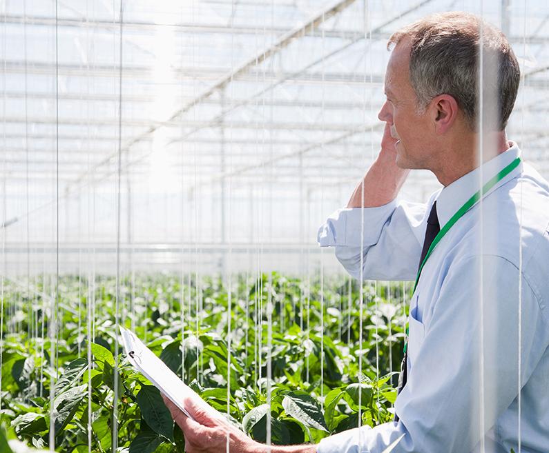 krediti garancijski fond vojvodine poljoprivredna gazdinstva