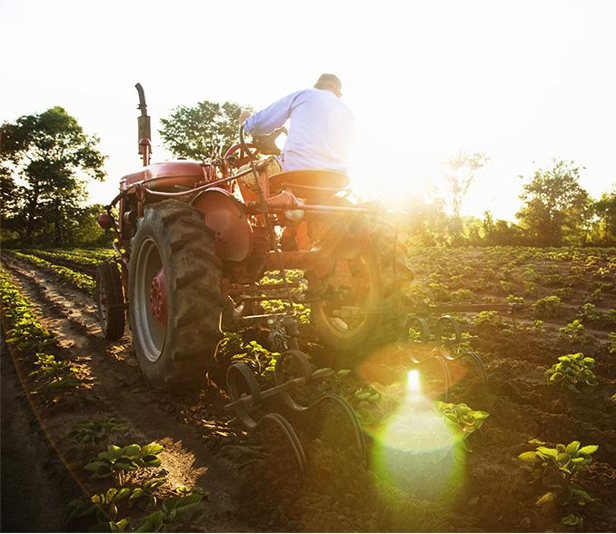 namenski tekuci racun za poljoprivredu intesa farmer hit i basic