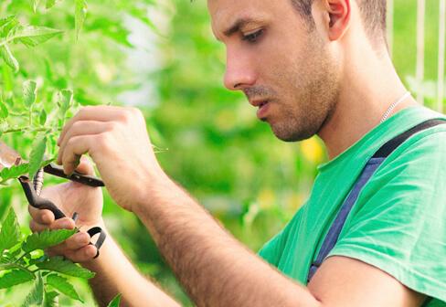 agroprotekt kredit za farmere poljoprivredu sa besplatnim osiguranjem