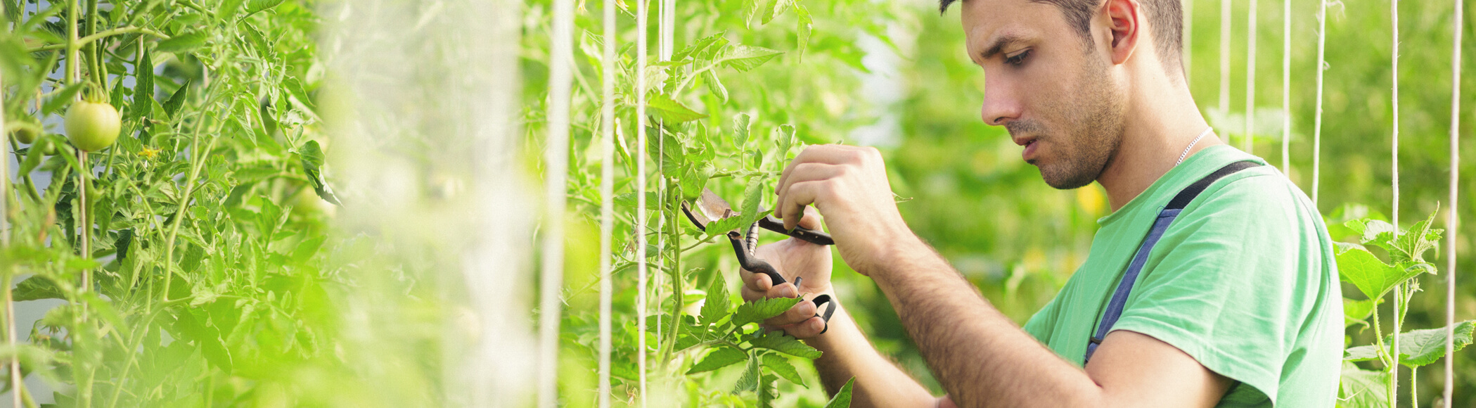Agroprotekt