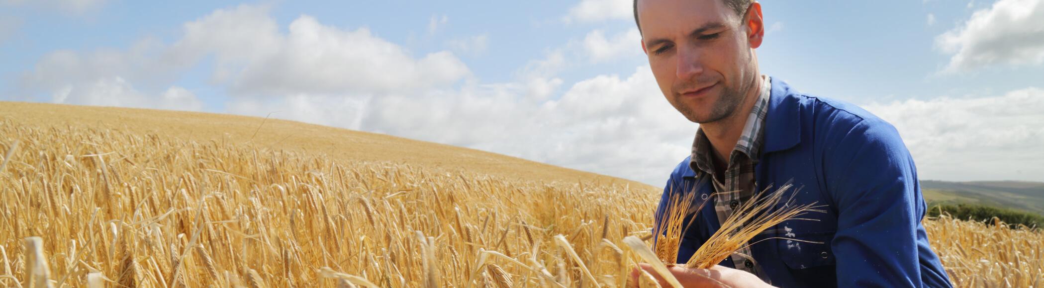 Namenski tekući računi poljoprivrednika