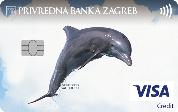 The Visa Classic charge card