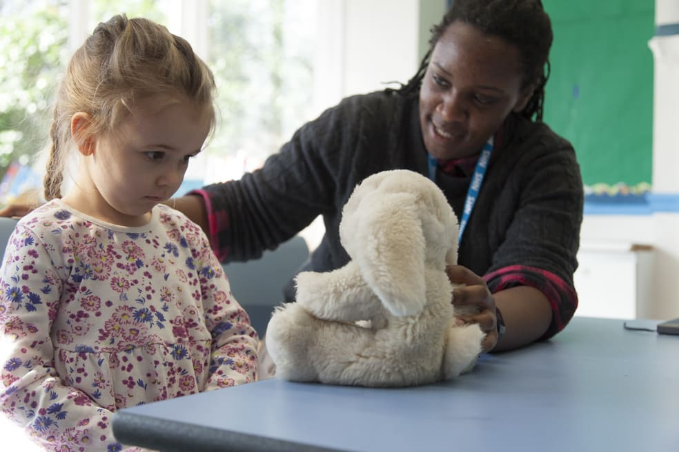 Children's Brain and Emotional Development Course