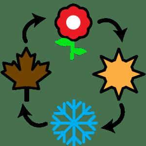 Brainsports seasonality