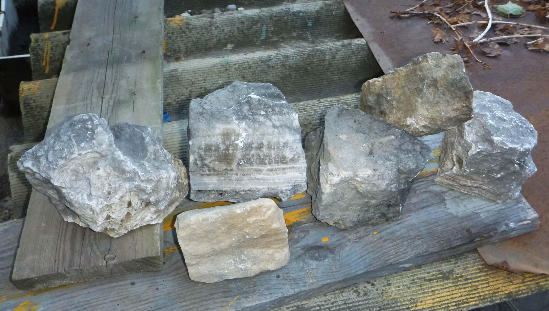 Мои ловят камни)