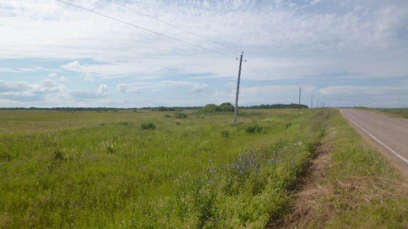 Положен ли земельный участок многодетным семьям