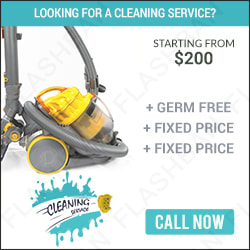 Cleaning Service Ad banner 2