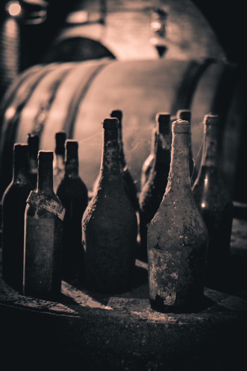 Wine in the cellar