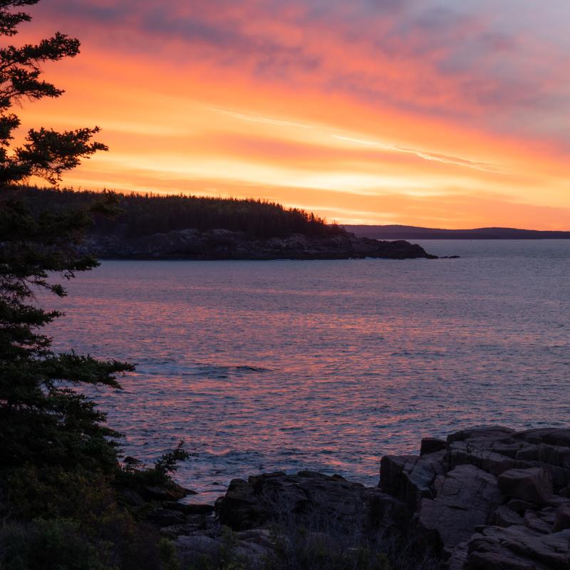 Acadia sky on fire sunrise