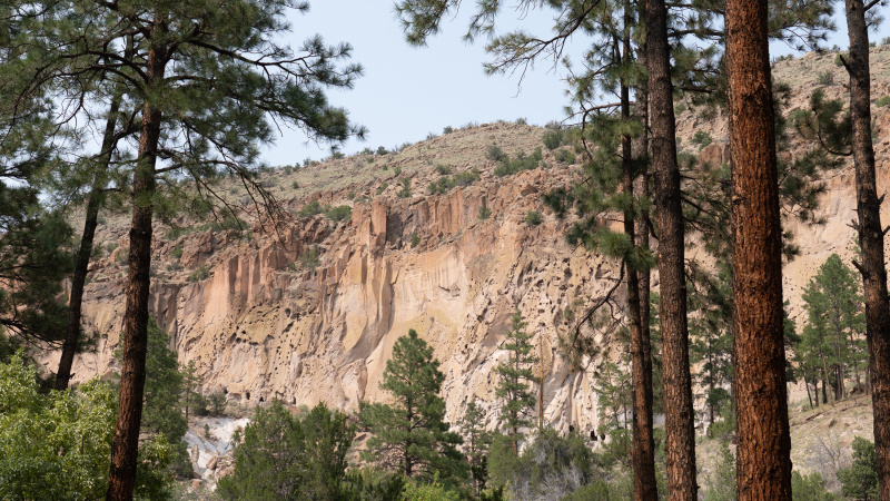 Beautiful cliff faces framed by pine trees